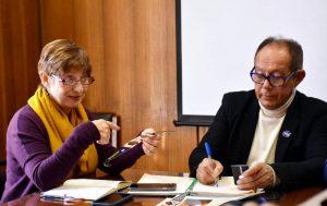 Astrónomos conversando sobre eclipse 2020 en Villarrica